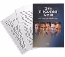 Picture of Team Effectiveness Profile - Theoretical Background