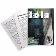Picture of Black Bear Theoretical Background